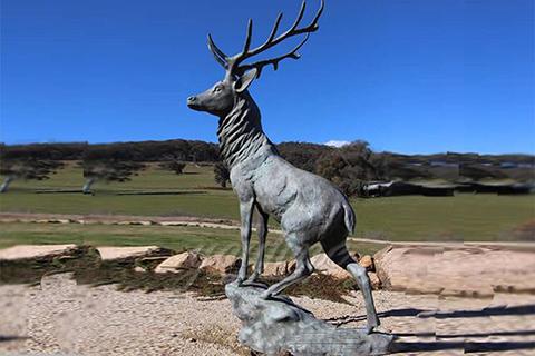 Outdoor life size bronze deer statues
